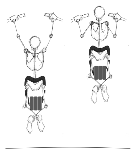 Weighted Pronated Pull-ups.