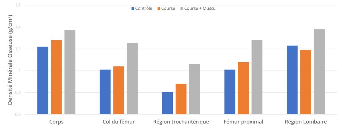 Mesure de la densité minérale osseuse chez les 3 groupes