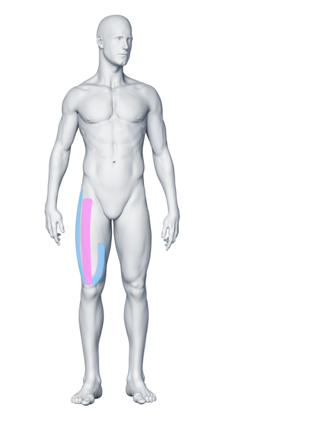 La douleur et la fatigue dans les pieds à la varicosité