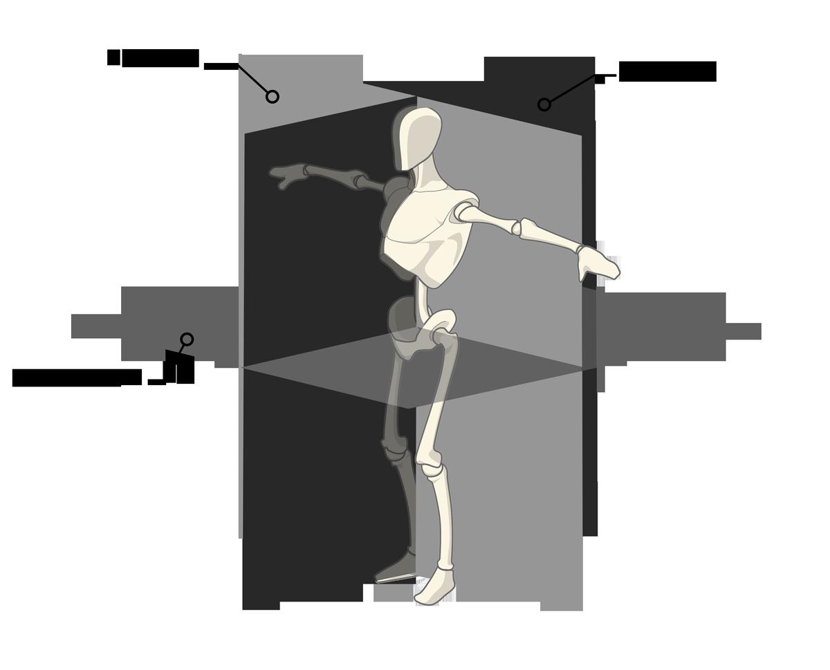 bevægelsesplaner, sagitale, frontale og transversale
